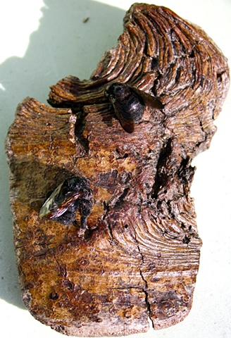 2 carpenter bees on found wood recycled object art eco art environmental art