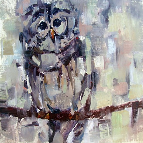 Who Cooks for You?  A Barred Owl Painting