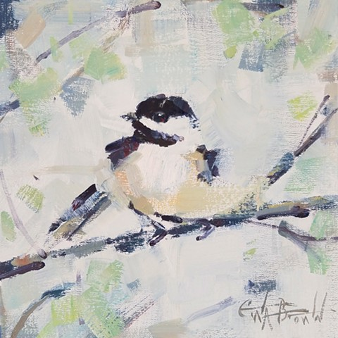 The Carolina Chickadee
