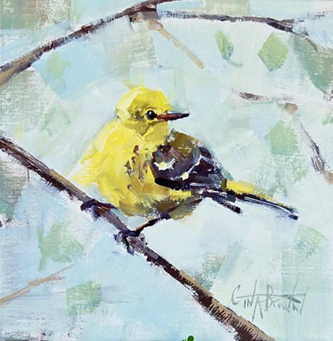 The Pine Warbler