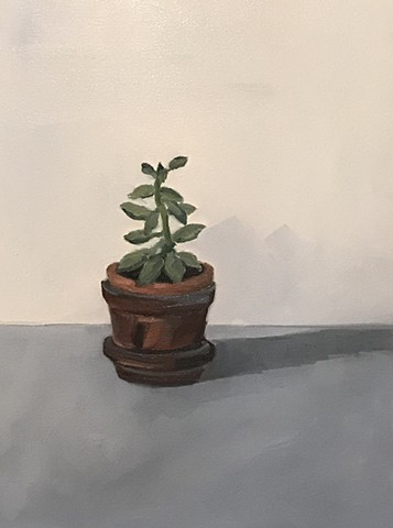 Little Lone Succulent