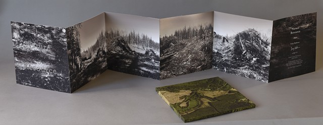 artist's book photographs of clear cut sites