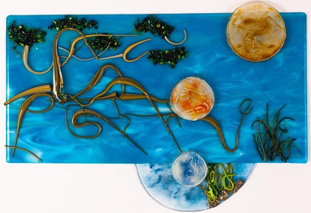 mangrove, underwater, sea, seahorse