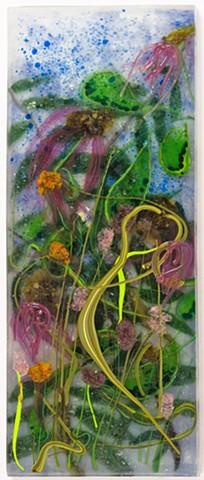 purple coneflower, echinacea, garden, native plants
