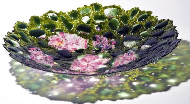 Azaleas in Spring