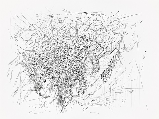 drawing, abstract, abstraction, art, map, lines, dots, marks, ink, pen, pencil, graphite boundary, border, borderless, pandemic, COVID19, artist, yangbinpark, markmaking