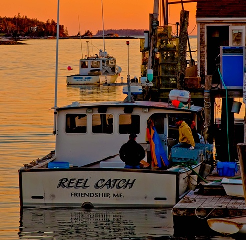 Reel Catch - Sunset