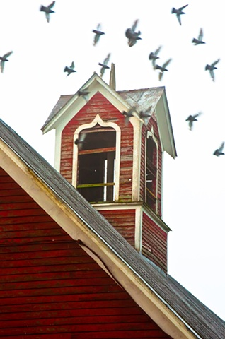 Birds and the Belfry