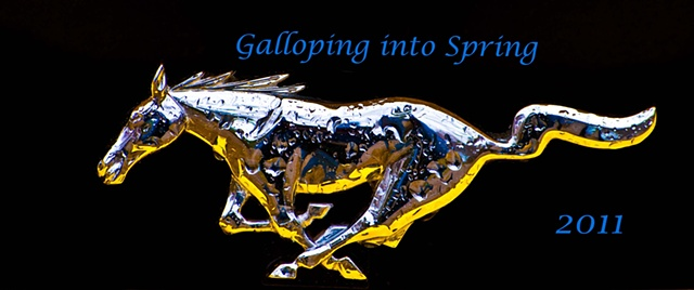 Galloping into Spring