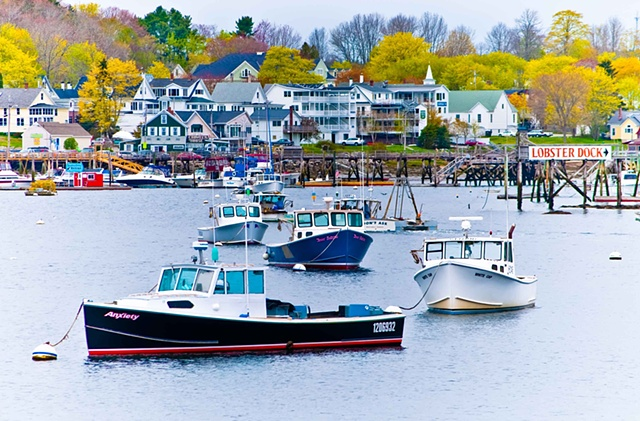 BoothBay Springtime