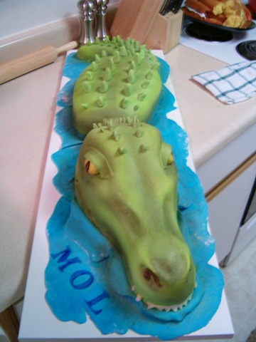 Company Picnic for MOL (logo is a croc)