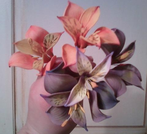 Peruvian Lilies - Orange and Purple
