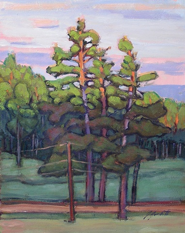First Light on the Pines
