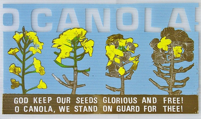 O CANOLA, Screenprint