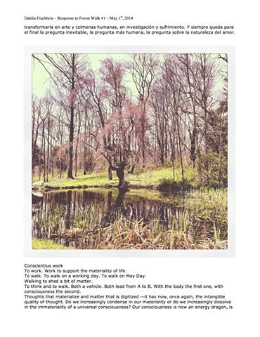 Forest Walk #1 - 1