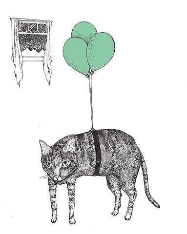 A cat named Nico.
