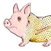 Pillow Hog
