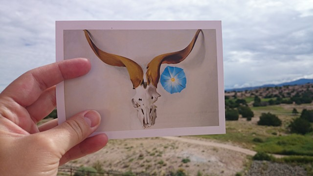 Postcard series (Santa Fe, NM) 2014