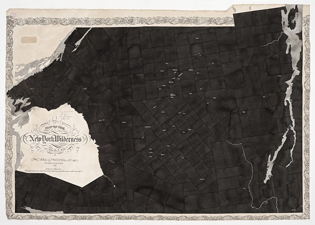 Map of the New York Wilderness, 1869