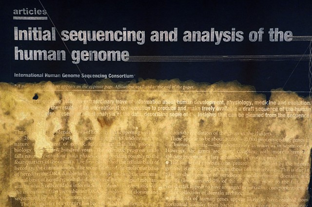 Sequencing stories, detail