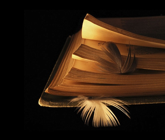 Book and Feathers 1