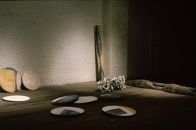 Installation view with Discs, Cages, and Three