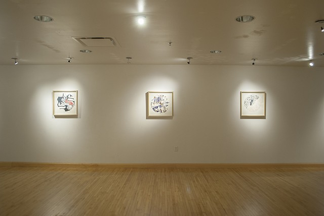 Installation view of Pestilent Confections drawings for Mineral Density exhibition