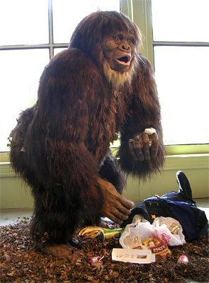 Taxidermy Bigfoot, by Eugene Parnell