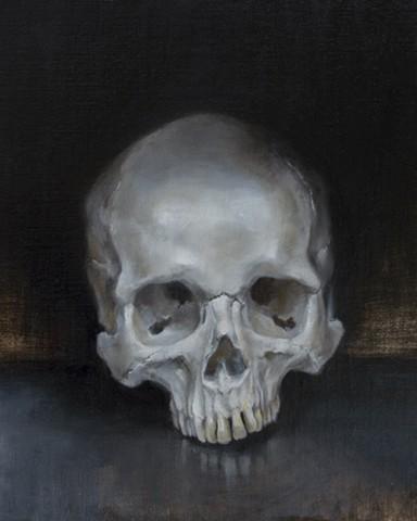 skull study from life
