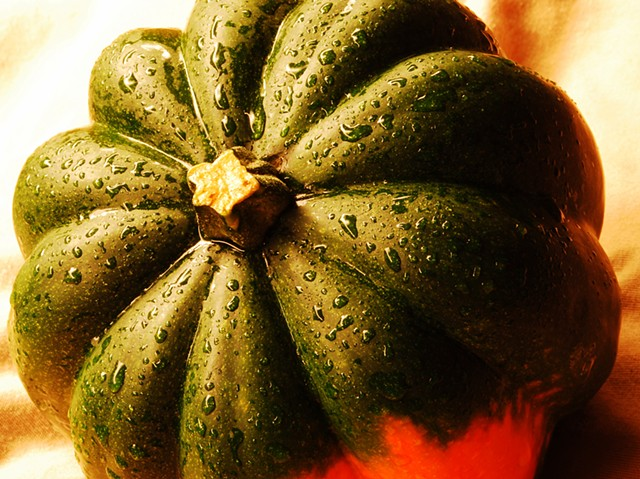 close up, Acorn Squash, squash, photograph, vegetable, gourd,