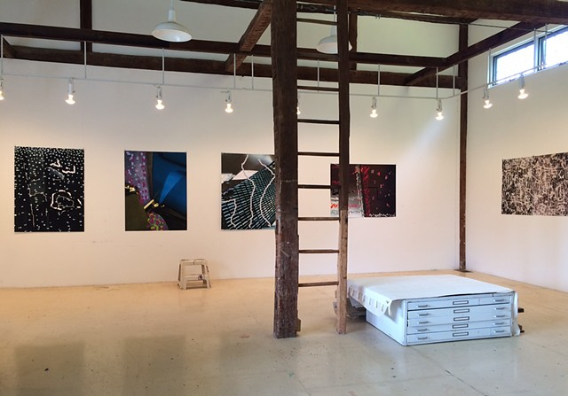 Palm Photographs, barn installation