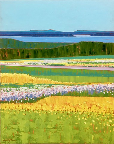 landscape, water view, meadow, Maine