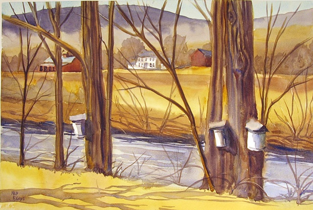 Sap Buckets by the River