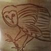 Owl Mug