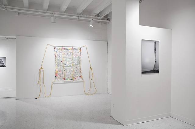 Danielle McCullough, Lia Lowenthal, Photo, painting, textile, california state university los angeles, new york city, carl andre, paula cooper, art