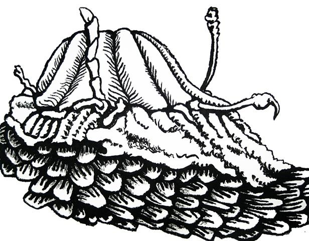 Clammy/ Hands Up Mollusk Skirt/ Annie