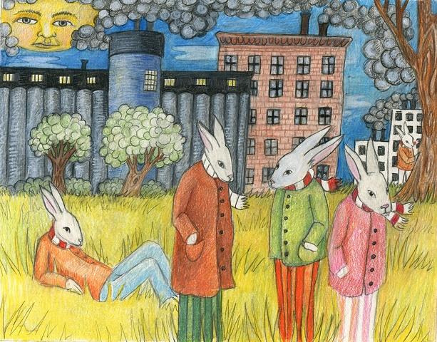 City rabbits.