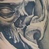 Bio Skull Stuff