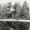 Untitled, Allerton Park in Winter