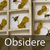 OBSIDERE