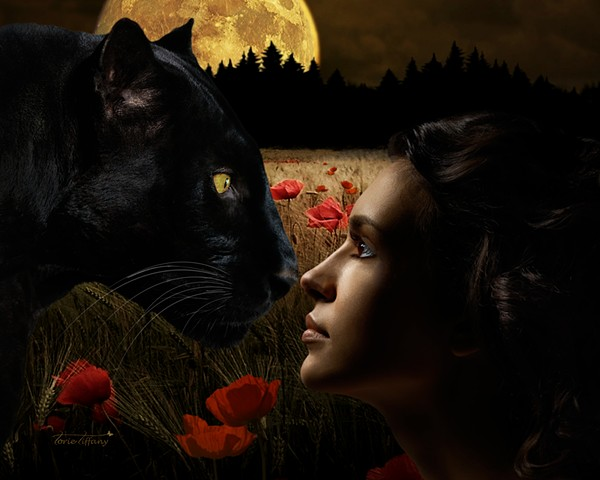 fine art, Ancient Spirits art, nature art, spirit guide art, animal spirit art, black cat art, goddess art, photographic art, spiritual art, digital art, unique art, digital painting