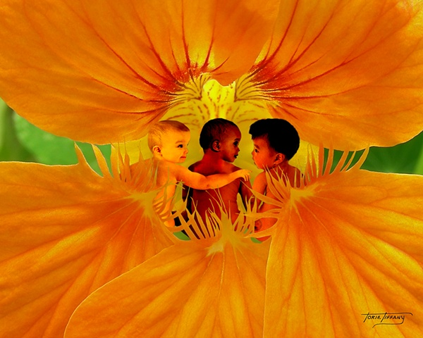 Fleurogeny art, baby art, three baby boys art, multi-racial babies art, child art, floral  art, flower art, unique art, fantasy art, beautiful art, photographic art, digital art, digital collage art, digital painting