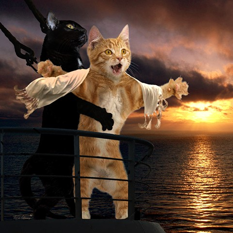 Comic art, Copy Cat art, cat art, animal art, Titanic art, photographic art, word play art, digital art, unique art, digital painting