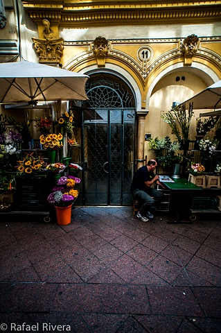 Jardin Botanica ~ Sevilla