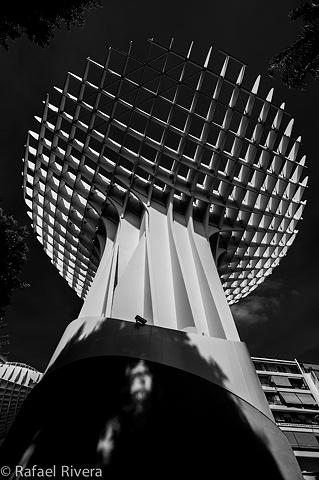 Metropol Parasol ~ Sevilla