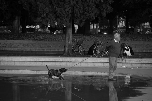 Man Best Friend - Verona