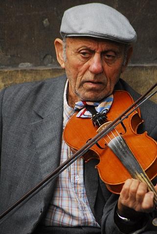 Violinest ~ Florence
