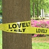 Lovely Caution