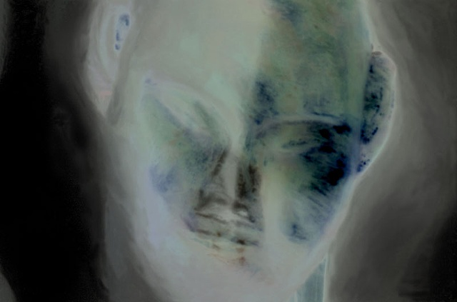 "Mongolian Death Mask 2011 zone plate photograph archival pigment print 20""x13"""