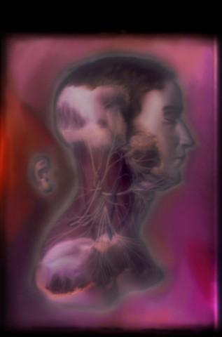 "Nervous System 2014 zone plate photograph archival pigment print 13""x20"""
